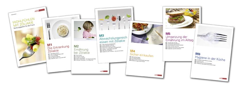 Beraterhandbuch in 6 Modulen